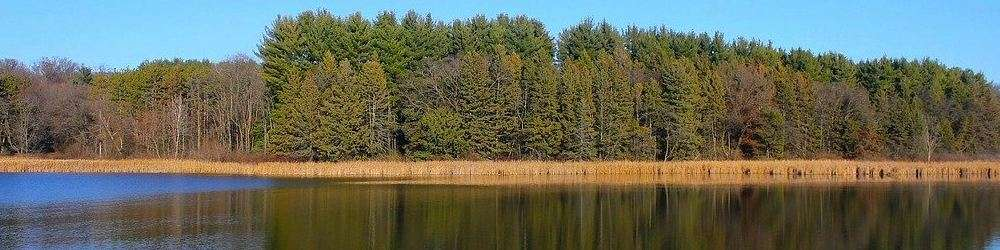 Lake and forest Wisconsin